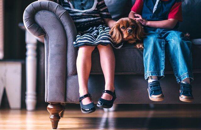Lapset istuvat koiran kanssa sohvalla